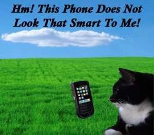 Cats And Smart Phones copy