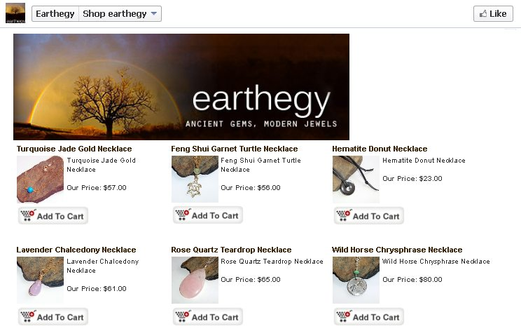 earthegy facebook campaign landing