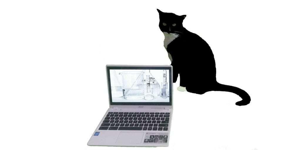 Scientific Blogging